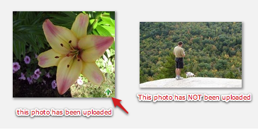 which photos have been uploaded