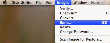 burn-dvd-optional.png